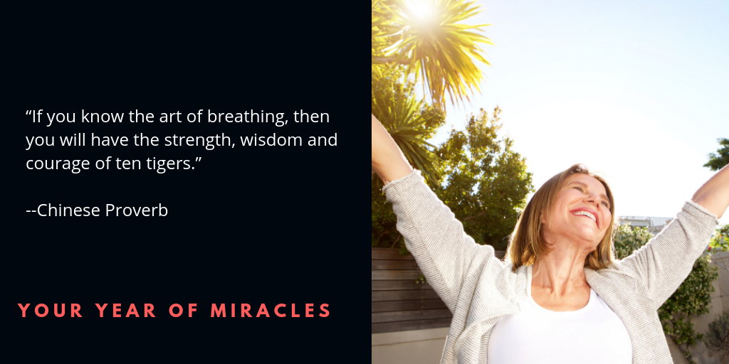 The Power of Prana - Your Year of Miracles
